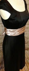 Adrianna Papell Dress Size 4 Black Pink